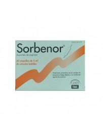 SORBENOR 1 G 20 AMPOLLAS BEBIBLES 5 ML